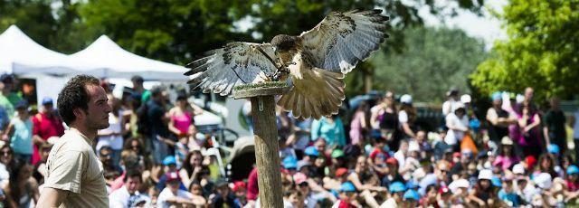 El Parque Forestal Adolfo Suárez celebró el Día Mundial del Medio Ambiente